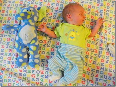 4 Weeks Old (4)
